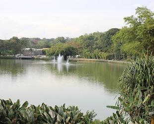 lake garden (2)