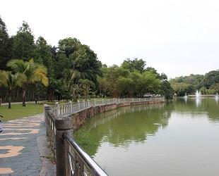lake garden (3)