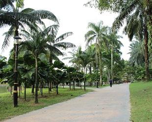lake garden (4)
